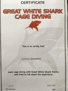 Certificado nadar con tiburones blancos